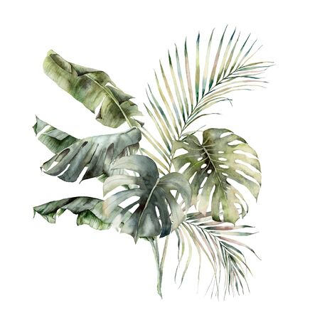 Watercolor tropical bouquet with banana, palm and monstera leaves. Hand painted branches and twigs isolated on white background. Floral jungle illustration for design, print or background.
