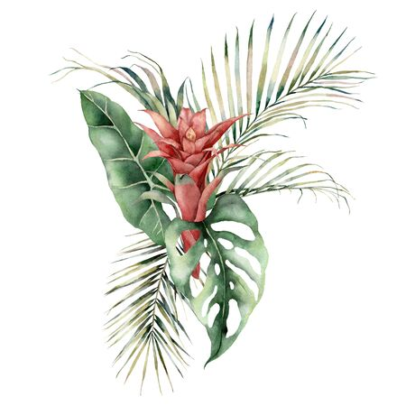 Watercolor tropical bouquet with guzmania, palm and monstera leaves. Hand painted card with red flowers and leaves isolated on white background. Floral illustration for design, print or background.
