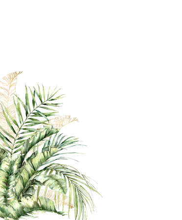 Watercolor gold card with palm branch. Hand painted tropical linear greenery and palm leaves. Floral illustration isolated on white background for design, print, fabric or background. 免版税图像