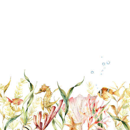 Watercolor tropical seamless border with underwater animals and laminaria. Hand painted illustration with kelp and coral reef plants isolated on white background. For design, fabric or print.