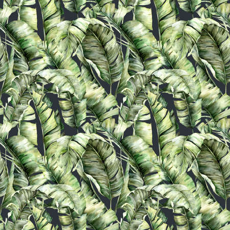 dark seamless pattern with tropical banana leaves. Hand painted exotic leaves and branches isolated on black background. Floral spring illustration for design, print, fabric or background.