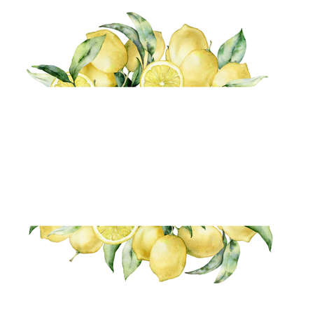 tropical banner with lemon and leaves. Hand painted exotic plant isolated on white background. Floral illustration for design, print, fabric or background.
