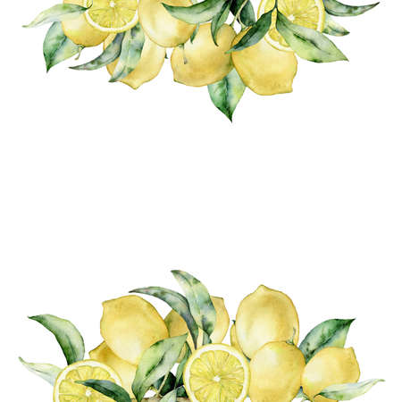 Watercolor tropical bouquet with lemon and leaves. Hand painted exotic card with plant isolated on white background. Floral illustration for design, print, fabric or background.