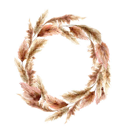 wreath with dry pampas grass. Hand painted exotic leaves isolated on white background. Floral illustration for design, print, fabric or background.