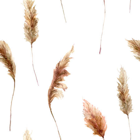 tropical seamless pattern with dry pampas grass. Hand painted exotic grass isolated on white background. Floral illustration for design, print, fabric or background.