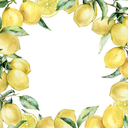 Watercolor tropical border with lemon and leaves. Hand painted exotic card with plant isolated on white background. Floral illustration for design, print, fabric or background. 免版税图像