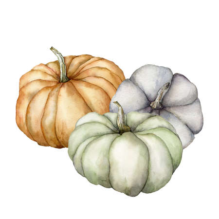 Watercolor gourds composition. Hand painted blue, green and orange pumpkins isolated on white background. Autumn harvest festival. Botanical illustration for design, print or background.