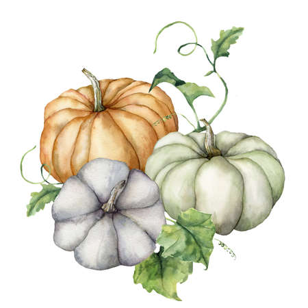Watercolor pumpkins and leaves composition. Hand painted blue, green and orange gourds isolated on white background. Autumn harvest festival. Botanical illustration for design, print or background.