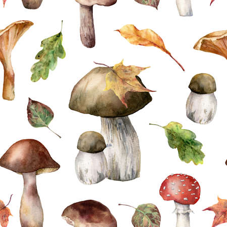 Watercolor autumn seamless pattern with amanita muscaria, chanterelle and boletus and leaves. Hand painted mushrooms isolated on white background. Botanical illustration for design, print, background. 免版税图像