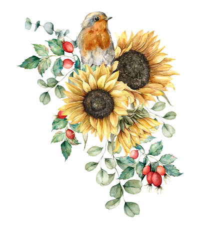 Watercolor autumn bouquet with robin redbreast, sunflowers, leaves and dogroses. Hand painted rustic card isolated on white background. Floral illustration for design, print, fabric or background. Stock Photo