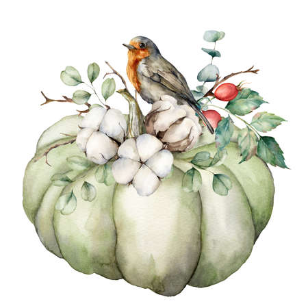 Watercolor card with robin redbreast, cotton, pumpkin and eucalyptus leaves. Hand painted bird and gourd isolated on white background. Floral illustration for design, print, fabric or background.