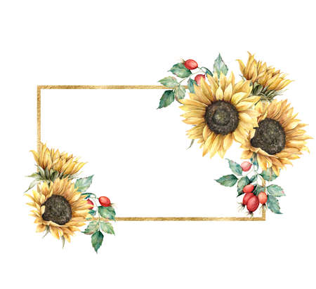 Watercolor autumn gold frame with sunflowers, berries and leaves. Hand painted rustic card isolated on white background. Floral illustration for design, print, fabric or background.
