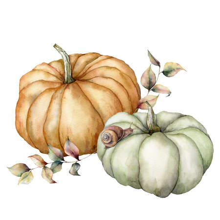 Watercolor pumpkins, leaves and snail composition. Hand painted gray and orange gourds isolated on white background. Autumn harvest festival. Botanical illustration for design, print or background.