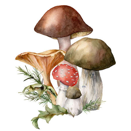 Watercolor autumn composition with mushrooms. Hand painted amanita muscaria, chanterelle and boletus isolated on white background. Botanical forest illustration for design, print or background.