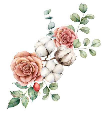Watercolor autumn bouquet with cotton, roses, dogroses and eucalyptus branches. Hand painted rustic card isolated on white background. Floral illustration for design, print, fabric or background. 免版税图像
