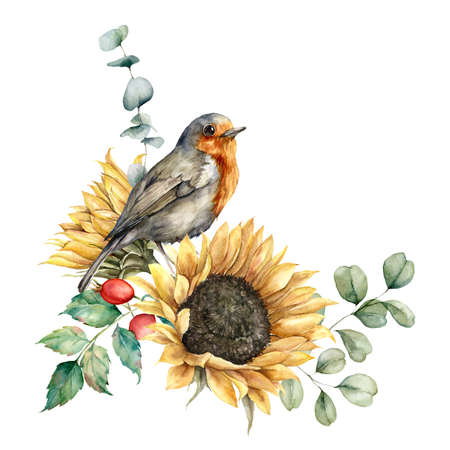 Watercolor autumn bouquet with redbreast, sunflowers, berries and eucalyptus leaves. Hand painted rustic card isolated on white background. Floral illustration for design, print, fabric or background.