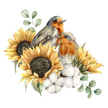 Watercolor autumn bouquet with redbreasts, sunflowers, cotton and eucalyptus leaves. Hand painted rustic card isolated on white background. Floral illustration for design, print, fabric or background.