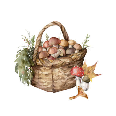 Watercolor autumn composition with basket, mushrooms, grass and leaves. Hand painted rustic card with boletus isolated on white background. Floral illustration for design, print, fabric or background. 免版税图像
