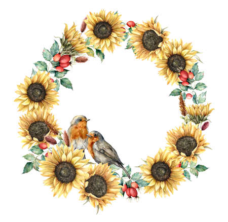 Watercolor autumn wreath with redbreast, sunflowers, berries and eucalyptus leaves. Hand painted border isolated on white background. Floral illustration for design, print, fabric or background. 免版税图像