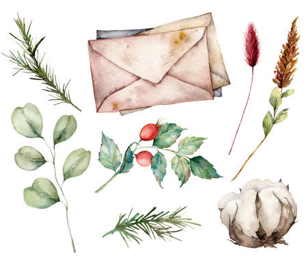 Watercolor autumn set with envelopes, cotton, berries and eucalyptus branch. Hand painted rustic card isolated on white background. Floral illustration for design, print, fabric or background.