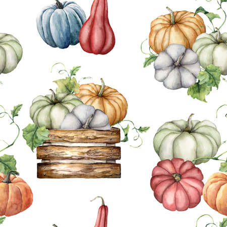 Watercolor autumn seamless pattern with pumpkins and leaves in the wooden box. Hand painted colorful gourds isolated on white background. Botanical illustration for design, print or background.