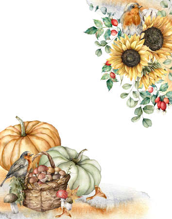 Watercolor autumn composition with robins, pumpkins, basket, sunflowers and berries. Hand painted rustic card isolated on white background. Floral illustration for design, print, fabric or background. 免版税图像 - 156280952