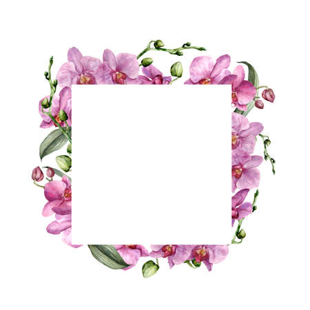 Watercolor square frame with pink orchids. Hand painted tropical border with flowers, leaves and buds isolated on white background. Floral illustration for design, print, background.