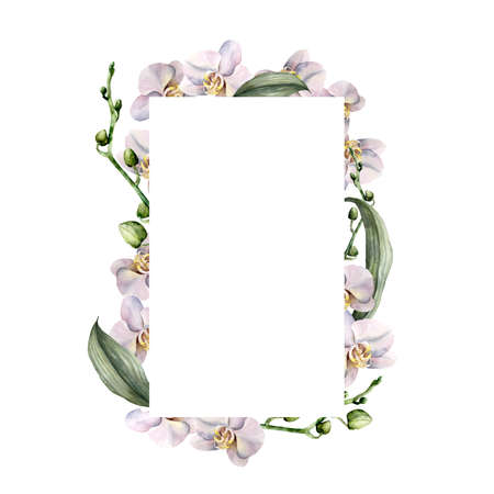Watercolor vertical frame with white orchids. Hand painted tropical border with flowers, leaves and buds isolated on white background. Floral illustration for design, print, background. 免版税图像