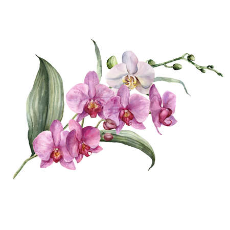 Watercolor bouquet with white and pink orchids. Hand painted tropical card with flowers, branches and leaves isolated on white background. Floral illustration for design, print, background.