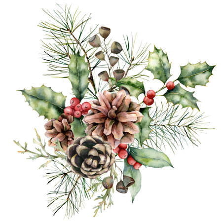 Watercolor Christmas bouquet with pine cones and holly. Hand painted holiday flower, seeds and berries isolated on white background. Winter floral illustration for design, print, fabric or background. 免版税图像
