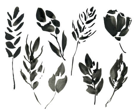 Watercolor abstract floral elements. Hand painted black leaves, seeds and twigs isolated on white background. Floral illustration for design, print or background.
