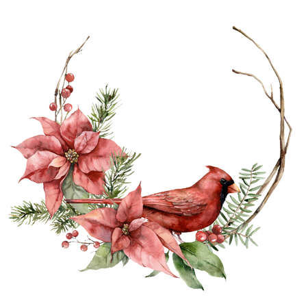 Watercolor Christmas wreath with cardinal bird, poinsettia and fir branches. Hand painted holiday card with flowers isolated on white background. Illustration for design, print, fabric or background.