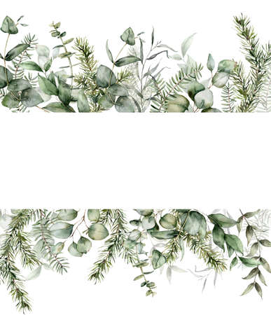 Watercolor Christmas banner with fir and eucalyptus branches. Hand painted holiday plants isolated on white background. Floral illustration for design, print, fabric or background.