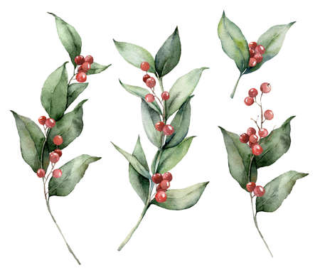 Watercolor Christmas set with branches and red berries. Hand painted holiday greenery isolated on white background. Floral illustration for design, print, fabric or background.