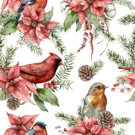 Watercolor Christmas seamless pattern of birds and flowers. Hand painted poinsettia, pine cone and fir branch isolated on white background. Holiday illustration for design, print, fabric, background.