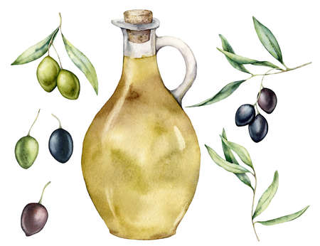 Watercolor kitchen set of black and green olives, branches and bottle with oil. Hand painted illustration with olive branches and leaves isolated on white background. For design, print and fabric.