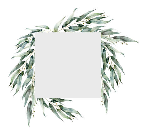 Watercolor greenery frame with flowering eucalyptus branches. Hand painted holiday plants isolated on white background. Plants illustration for design, print, fabric or background. Christmas card.