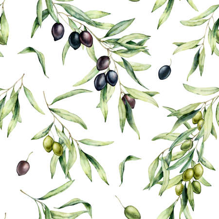 Watercolor kitchen seamless pattern of green and black olives. Hand painted illustration with olive branches and leaves isolated on white background. For design, print and fabric. Imagens