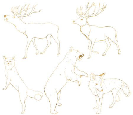 Watercolor set of gold animals. Hand painted linear bear, deer, fox and wolf isolated on white background. Wildlife illustration for design, print, fabric or background. 免版税图像