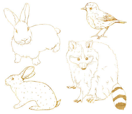 Watercolor forest set of gold animals. Hand painted linear rabbit, bunny, bird and raccoon isolated on white background. Wildlife illustration for design, print, fabric or background. 免版税图像