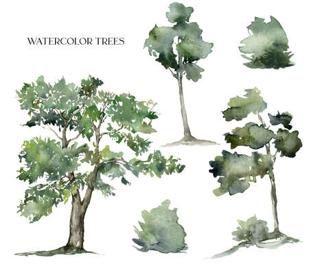 Watercolor nature set of abstract trees and bushes. Hand painted greenery illustration isolated on white background. For design, print, fabric or background.