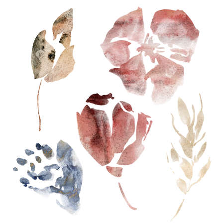 Watercolor floral set of abstract flowers and spots. Hand painted minimalistic illustration isolated on white background. For design, print, fabric or background.