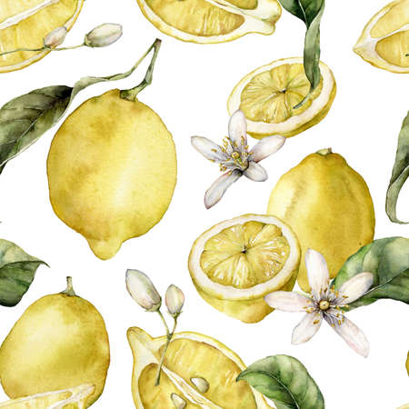 Watercolor seamless pattern of ripe lemons, leaves and blooming flowers. Hand painted fresh fruits isolated on white background. Tasty food illustration for design, print, fabric or background. Banque d'images