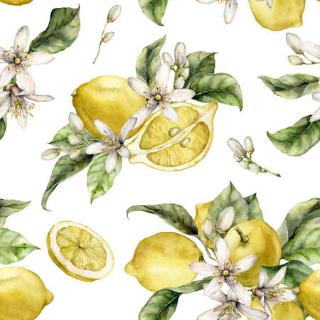 Watercolor seamless pattern of fresh lemons, green leaves and blooming flowers. Hand painted ripe fruits isolated on white background. Tasty food illustration for design, print, fabric or background. 写真素材