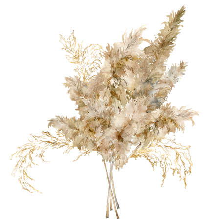 Watercolor tropical bouquet of dry and gold pampas grass. Hand painted exotic card of plant isolated on white background. Floral illustration for design, print, fabric or background.
