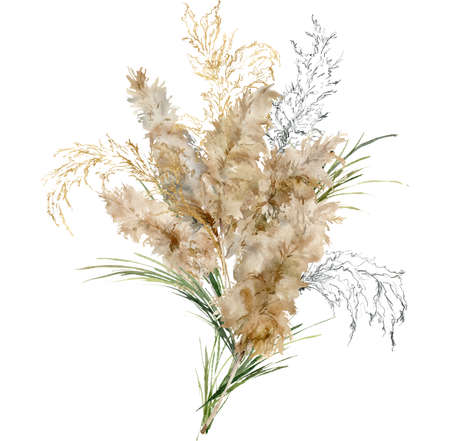 Watercolor tropical bouquet of green, black and gold pampas grass. Hand painted exotic card of dry plant isolated on white background. Floral illustration for design, print, fabric or background.