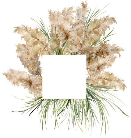 Watercolor tropical frame of dry and green pampas grass. Hand painted border of exotic plant isolated on white background. Floral illustration for design, print, fabric or background.