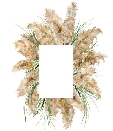 Watercolor vertical frame of dry and green pampas grass. Hand painted tropical border of exotic plant isolated on white background. Floral illustration for design, print, fabric or background.