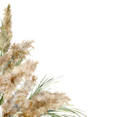Watercolor tropical border of green and dry pampas grass. Hand painted exotic frame of plant isolated on white background. Floral illustration for design, print, fabric or background.
