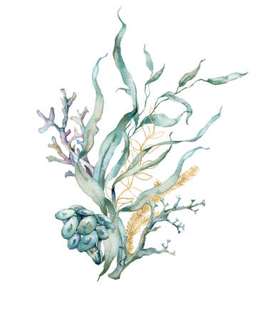 Watercolor tropical card of gold laminaria and linear corals. Underwater bouquet of plant and corals isolated on white background. Aquatic illustration for design, print or background.
